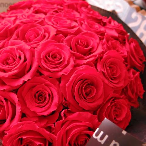 赤バラ 花束